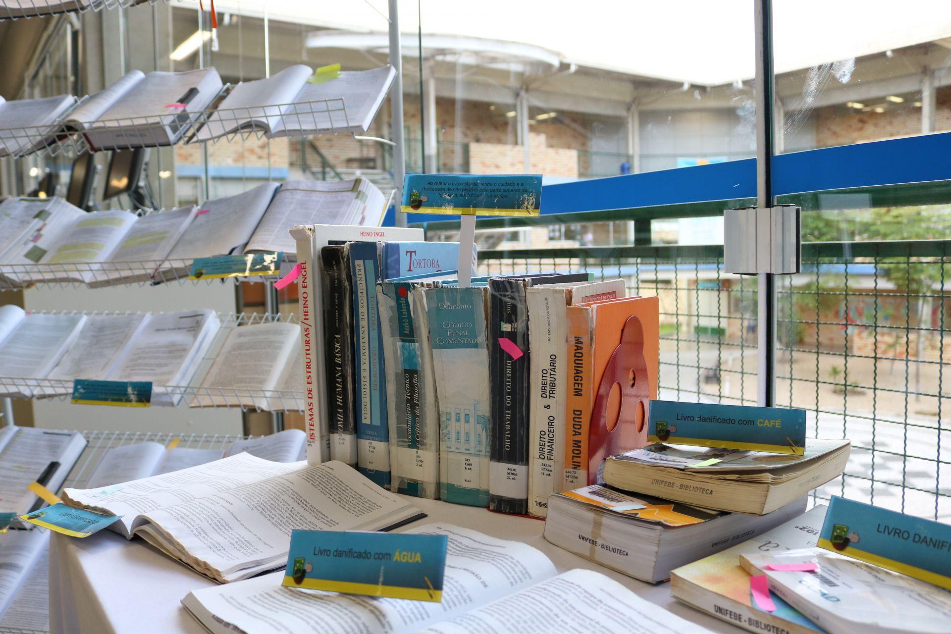 Biblioteca expõe livros danificados em ação de conscientização