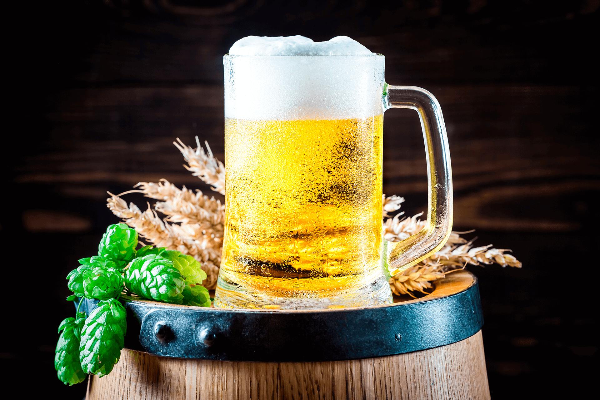 Cervejeiro Artesanal