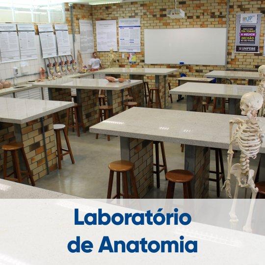 laboratorio-anatomia-6
