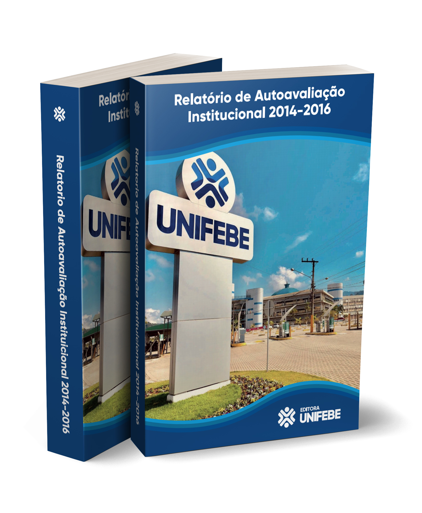 relatório de autoavaliação 2014 2016