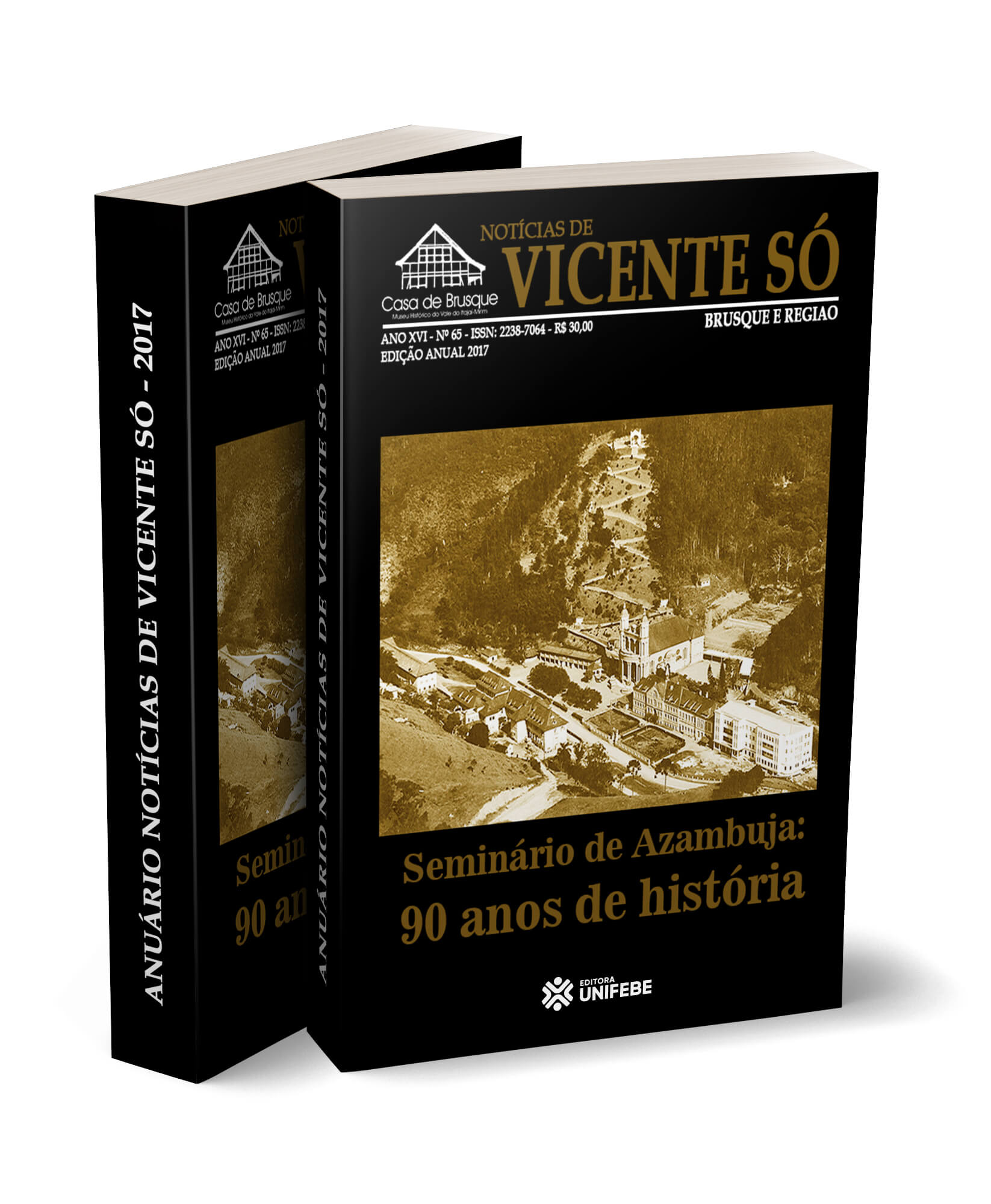 vicente-2017